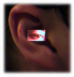 ¿debemos fiarnos de nuestra percepción de la realidad?
